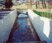 Acondicionamiento-del-arroyo-La-Reguera-de-Caltellanos